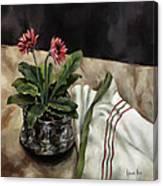 Baberton Daisies Canvas Print