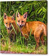 Babes In The Woods 2 - Paint Canvas Print