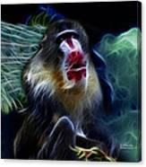 Baboon 4239 - F Canvas Print