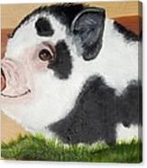 Baby Bacon Canvas Print