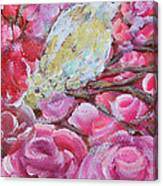 Baby Dove Of Peace Pink Flowers Canvas Print