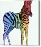 Baby Rainbow Zebra Canvas Print