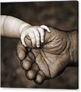 Babys Hand Holding On To Adult Hand Canvas Print