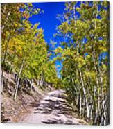 Back Country Road Take Me Home Colorado Canvas Print