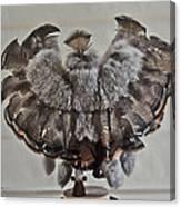 Back Kachina Eagle Canvas Print