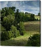 Back Pasture Canvas Print