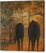 Back To The Stable Canvas Print