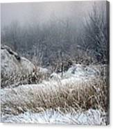 Back Woods Winter Canvas Print