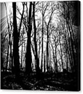 Backdunes In April Canvas Print