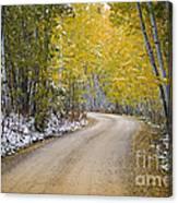Backroads Of Autumn Canvas Print