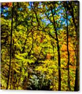 Backroads Of The Great Smoky Mountains National Park Canvas Print