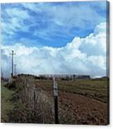 Backroads- Telephone Poles- And Barbed Wire Fences Canvas Print