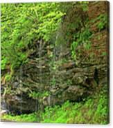 Backroads Waterfall In West Virginia Canvas Print