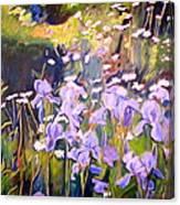 Backyard Garden IIi Canvas Print