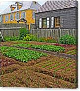 Backyard Garden In Louisbourg Living History Museum-1744-ns Canvas Print