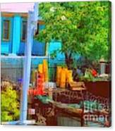 Backyard In Bright Colors Canvas Print