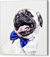 Bacon The Pug Canvas Print