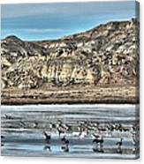 Badlands Spring Thaw Canvas Print