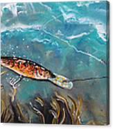 Bagley's Deep Dive Canvas Print