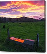 Bahrs Scrub Sunset Canvas Print