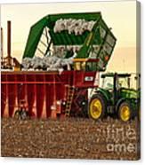Bailing Cotton Canvas Print