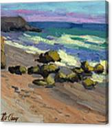 Baja Beach Canvas Print