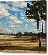 Bakers Ranch Canvas Print