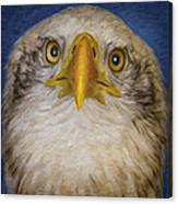 Bald Eagle 4 Canvas Print