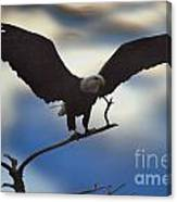Bald Eagle And Clouds Canvas Print