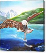 Bald Eagle Having Dinner Canvas Print
