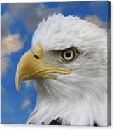 Bald Eagle In The Clouds Canvas Print