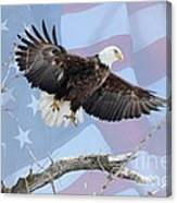 Bald Eagle Touch Of Pride Canvas Print