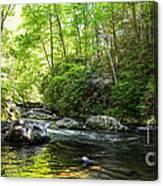 Bald River Canvas Print