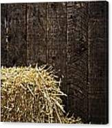 Bale Of Straw And Wooden Background Canvas Print