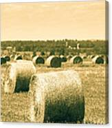 Baled And Ready Canvas Print