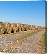 Bales Of Hay On An Old Farm Road Canvas Print