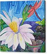 Bali Dragonfly Canvas Print