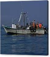 Ballestas Fishing Boat Canvas Print