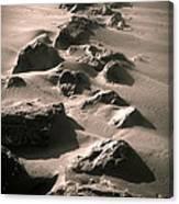 Bally B Desert Canvas Print