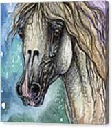 Balon Polish Arabian Horse Portrait 4 Canvas Print