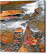 Balsam River Rocks And Leaves Canvas Print