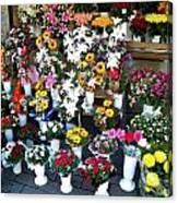 Baltic Flower Shop Canvas Print
