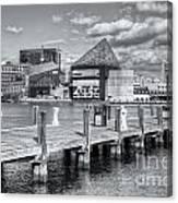 Baltimore Inner Harbor Skyline Vi Canvas Print