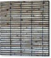 Bambo Wall Canvas Print