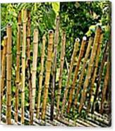 Bamboo Fencing Canvas Print
