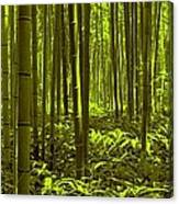 Bamboo Forest Twilight  Canvas Print