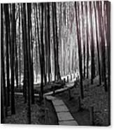 Bamboo Grove At Dusk Canvas Print