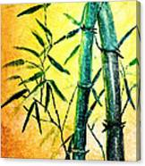 Bamboo Magic Canvas Print