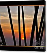 Bamboo Sunset - Black Frame Canvas Print