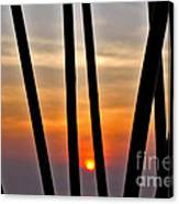 Bamboo Sunset Canvas Print